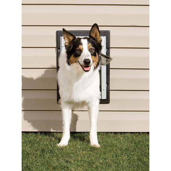 Petsafe Wall Entry Aluminum Dog Or Cat Door Medium Ppa11 10916