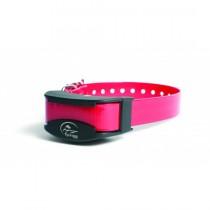 SportDog Fieldtrainer Add a Dog Collar SDR-AS