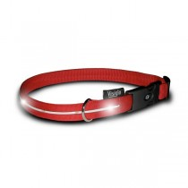 Visiglo Red Nylon Collar with White LED